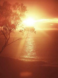 photography sunrise summer
