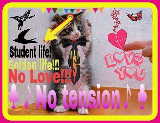 Student Life Is Golden Life Image By Smartsantu