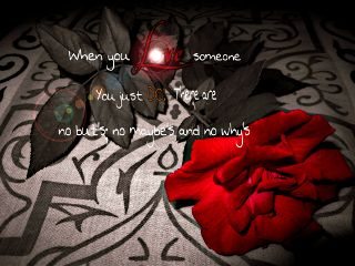 photography redrose love quotes & sayings lightflare