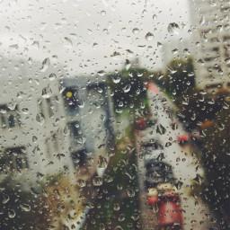 photography rain vscocam nature vsco