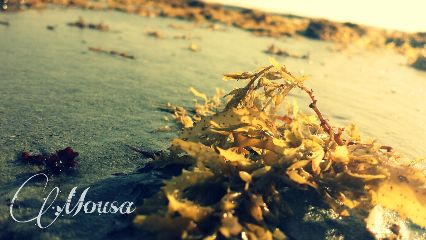 beach colorful color splash photography photostory