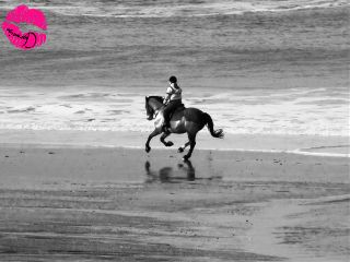 black & white beach cornwall horses photography